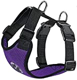 Slowton Dog Harness, Pet Vest Harness for Dogs Safety in Car Adjustable Neck and Chest Strap Breathable Soft Fabric Multifunctional Vest with Quick Release for Travel Walking Daily Use (Small, Purple)