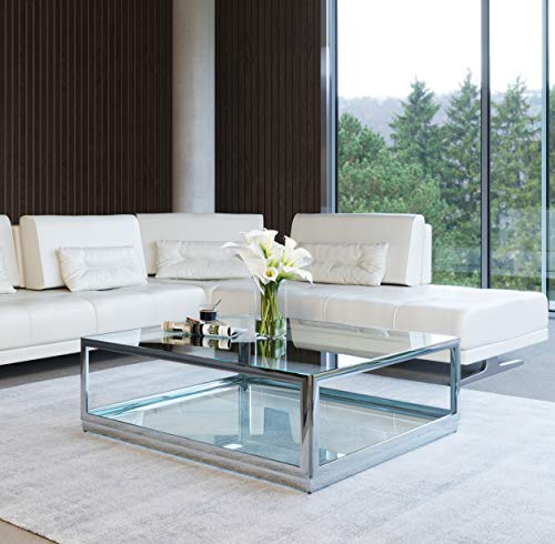 Limari Home Eduard Collection Modern Style Living Room Clear Glass Top Square Coffee Table with Polished Stainless Steel Frame, Silver