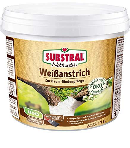Naturen Bio Weißanstrich, Baumanstrich zum Weißen von Bäume gegen Frostschäden an Obst und Ziergehölzen, 1 Liter