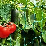 ANYUNKEY Premium Ranknetz mit großer Maschenweite für besonders ertragreiche Ernte von Gurken, Tomaten und Anderen Gemüsepflanzen - Rankhilfen für Kletterpflanzen (2 X 2.5 Meter)