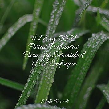 #May 2021 Pistas Poderosas Para La Serenidad Y El Enfoque