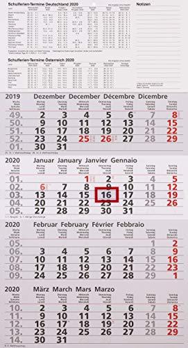 ADINA Viermonatskalender 54x30cm mit Tagesanzeiger (2020)
