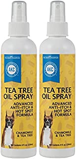 Best household anti itch Reviews