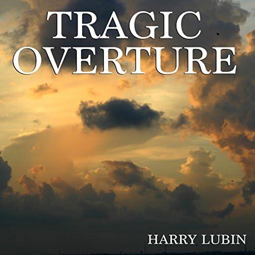 Harry Lubin