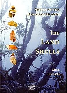hawaiian shells identification