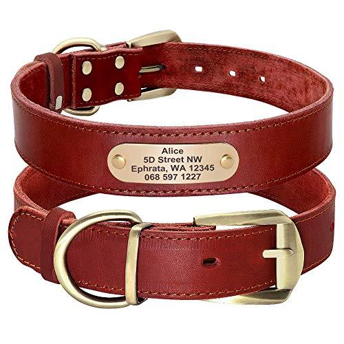 Didog Hundehalsband aus echtem Leder mit graviertem Namensschild, personalisierbar, weiches Leder, Hundehalsband mit individuellem ID-Etikett, braun/grün/rot für mittelgroße Hunde