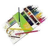 EARJE 72 Lápices de Dibujo para Adultos Lápices de Colores Artísticos el Mejor Conjunto Profesional de Lápices de Colores para Adultos y Niños.
