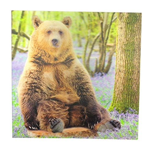 Glamour Girlz Up Close 3D-Geburtstagskarte mit braunem Bär auf einem Baumstumpf