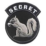 Secret Squirrel Patch...image
