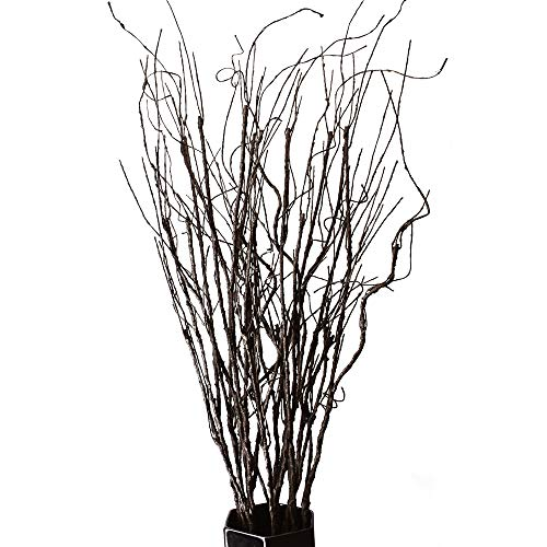 FeiLix 10PCS Lifelike Curly Willow Branches Decorative Dried Artificial Twigs, 30.7 Inches Fake Bendable Sticks Vintage Vines/Stems DIY Greenery Plants Craft Vases Home Garden Hotel Office Party Decor