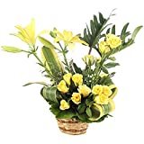 Product Description - Fresh Basket Arrangement of 14 Yellow Rose And 2 Yellow Lilies along with Same Day Delivery Filler Material: Seasonal Fillers Arrangement Type: Fresh Warm Wishes Basket Arrangement Occasion Type: Birthday, Anniversary, Marriage,...