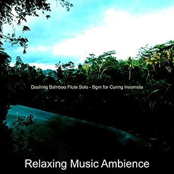 Dashing Bamboo Flute Solo - Bgm for Curing Insomnia