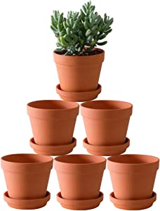 Terra Cotta Pots with Saucer- 6-Pack Large Terracotta Pot Clay Pots 5.5'' Clay Ceramic Pottery Planter Cactus Flower Pots Succulent Pot with Drainage Hole- Great for Plants,Crafts Terra Cotta Planter