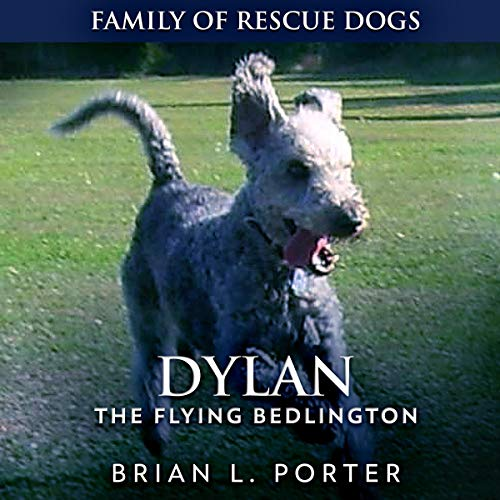 Dylan Audiobook By Brian L. Porter cover art