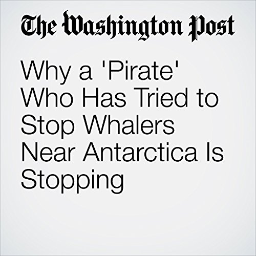 Why a 'Pirate' Who Has Tried to Stop Whalers Near Antarctica Is Stopping copertina
