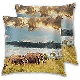 Butlerame Juego de 2 Fundas de Almohada, Gran Familia de Elefantes de la Sabana Africana con Cielo Nublado dramático y Oscuro pastizales, Funda de Almohada Decorativa Cuadrada de 18x18 Pulgadas