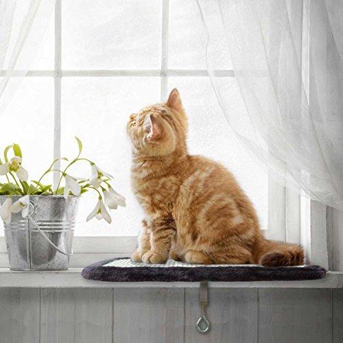 PetPäl Katzenliege Perfekter Fensterliegeplatz für Katzen mit Kratzbrett - DIE Liegefläche (39x29cm) am Lieblings Fensterplatz für die Katze - Ideale Fensterbank Liegeplatte