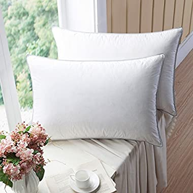 WENERSI Premium Goose down Pillows with Feather Blended,(2-pack, King Firm) 100% Cotton Shell with ULTRA FRESH Treatment