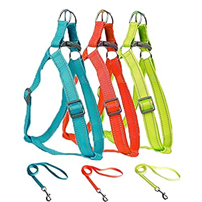LittleTail Pet Outdoor Training Safe Reflective Nylon Colourful Adjustable Dog Harness with Matching Leash for Small Medium Large X-Large Size