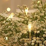 OhhGo Guirnalda de luces de libélula 3 metros 20 LED de alambre de cobre libélula luces de hadas para fiesta cumpleaños vacaciones