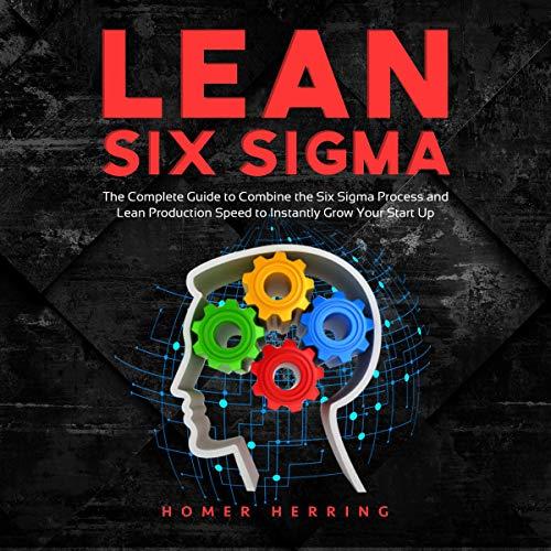 Lean Six Sigma Audiobook By Homer Herring cover art