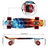 Zoom IMG-1 streakboard skateboard cruiser cuscinetti 56