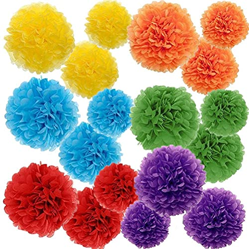 PINSUKO Paper Pom Poms Color Tissue Flowers Birthday Celebration Wedding Party Halloween Christmas Outdoor Decoration,18 pcs of 10 12 14 Inch