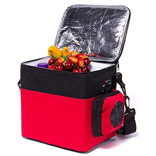 waard 6 liter draagbare thermo-elektrische koelbox geluidloos 12 V en 220 V voor auto en stopcontact ideaal voor outdooractiviteiten in de tuin, barbecue picknick camping