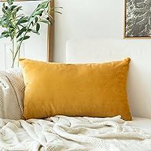 MIULEE Terciopelo Funda de Cojine Funda de Almohada del Sofá Throw Cojín Decoración Almohada Caso de la Cubierta Decorativo Almohadas para Sala de Estar 30x 50cm 12 x 20 Pulgadas 1 Pieza Golden