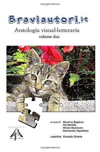 Antologia visual-letteraria (Volume due): Antologia dedicata
