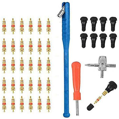 Heritan Kit de herramientas de reparación de válvula de neumático de coche 43 piezas herramientas de instalación vehículos eléctricos accesorios válvula de neumático removedor de núcleo
