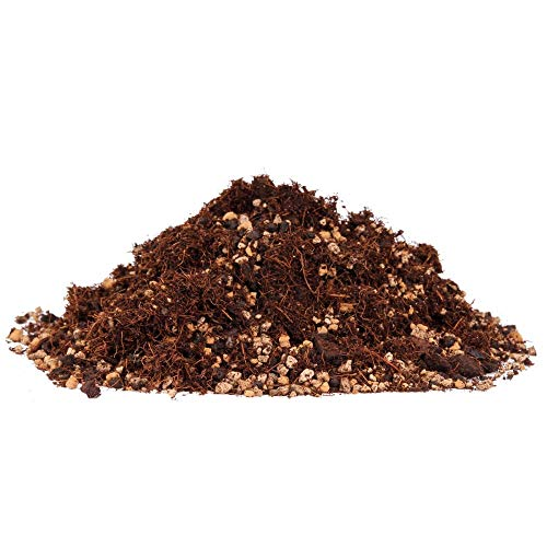 Bonsai-Erde 10 Liter - mit feinem Kokos-Substrat, für Laubbäume 62020