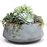 Large Succulent Planter Pots - Ceramic Indoor Outdoor Garden Pot with Drainage for Plant Flower, 8 Inch, Gray