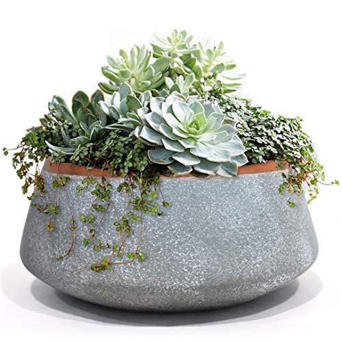 La Jolíe Muse Succulento Vaso, Vasi per Piante Vaso da Interno, 20.3cm, Grigio