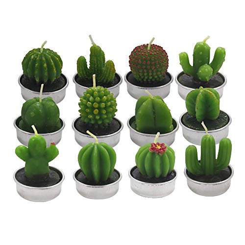 THMY Scented Candles 12 Pcs,Handmade Delicate Cactus Succulent Tealight Candles Gift Set for Home Decoration, Safety and Smokeless Cute Tea Light Candle for Birthday, Party Gifts