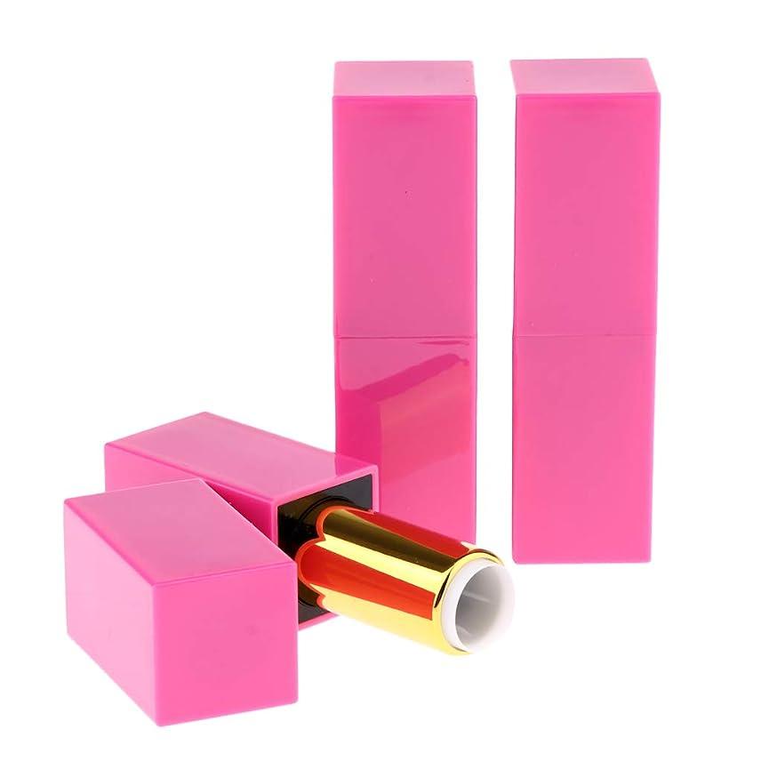 加速する咲くハンバーガーSM SunniMix 12.1mm 空リップグロス容器 口紅チューブ 化粧チューブ 空詰め替えリップチューブ