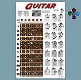 Laminated Guitar Fretboard & Chord Chart & Picks - Easy Instructional Poster for Beginner 4 PICK 11'x17'