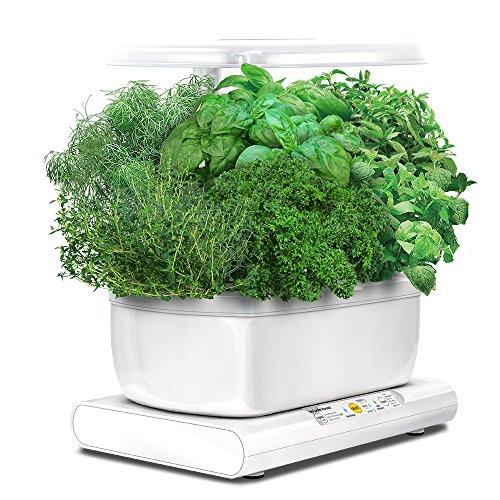 Miracle-Gro AeroGarden Harvest avec kit de capsules de graines d'herbes...
