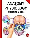 Anatomy and Physiology Coloring Book: Netter's Anatomy Coloring Book, and Human Body Workbook (Updated Edition)