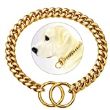 Dog Choke Chain Collar Gold 10MM Cuban Link Dog Collar Stainless Steel Metal Silp Choker Collars Heavy Duty Chew Proof Walking (18')