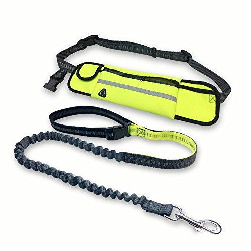 Alihoo Joggingleine Joggingleine mit Taillengürtel inkl. Tasche für kleine und mittelgroße Hunde zum Laufen, Laufen, Joggen, dehnbar von 140 bis 160 cm (Grün)