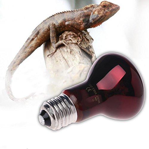Jiamins Wärmelampe, Infrarot-Lampe für Reptilien und Amphibien