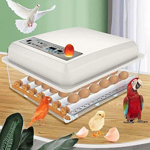 4YANG Incubadora de Huevos, incubadora automática de 36 Huevos, incubadora de Aves de Pollo y Pato Controlable automáticamente la Temperatura del Huevo, hogar Inteligente con Pantalla LED Digital