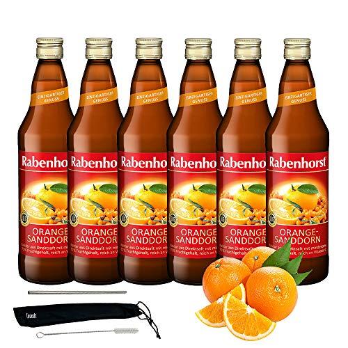 Rabenhorst Saft Orange-Sanddorn-Nektar 6x 700ml Vegan Fruchtgetränk aus Orangensaft und Sanddornmark - Fruchtgehalt: mindestens 70% PLUS fooodz-Trinkhalm Set mit Reinigungsbürste