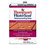 THOMPSON'S WATERSEAL 42831 1G SEQ RED S-TRN...