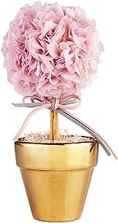 N / B Hortensia Rose de Haute qualité respectueux de l'environnement, utilisant des Moyens de Haute Technologie pour Maint...