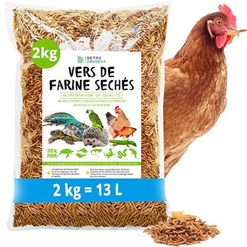 MeerBach & Rose vers de Farine Séchés-2 kg=13000ml-Nourriture pour Poissons, Oiseaux, Tortues, Hérissons, Rongeurs et Reptiles