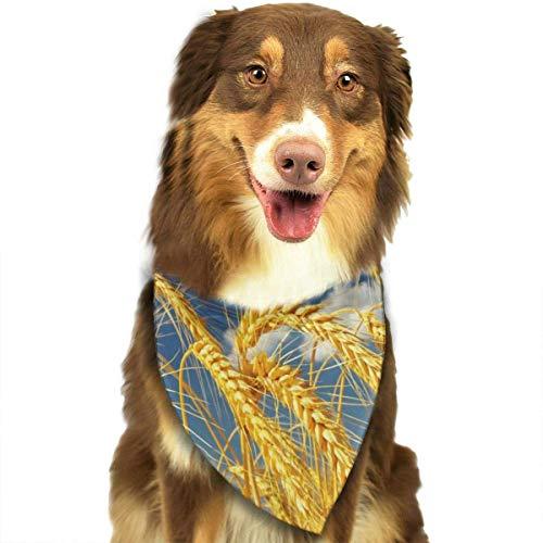 Otoño Trigo Perro pañuelo Collares triángulo pañuelo Baberos Bufandas Accesorios Mascotas Gatos y Cachorros bebé Toalla de Saliva