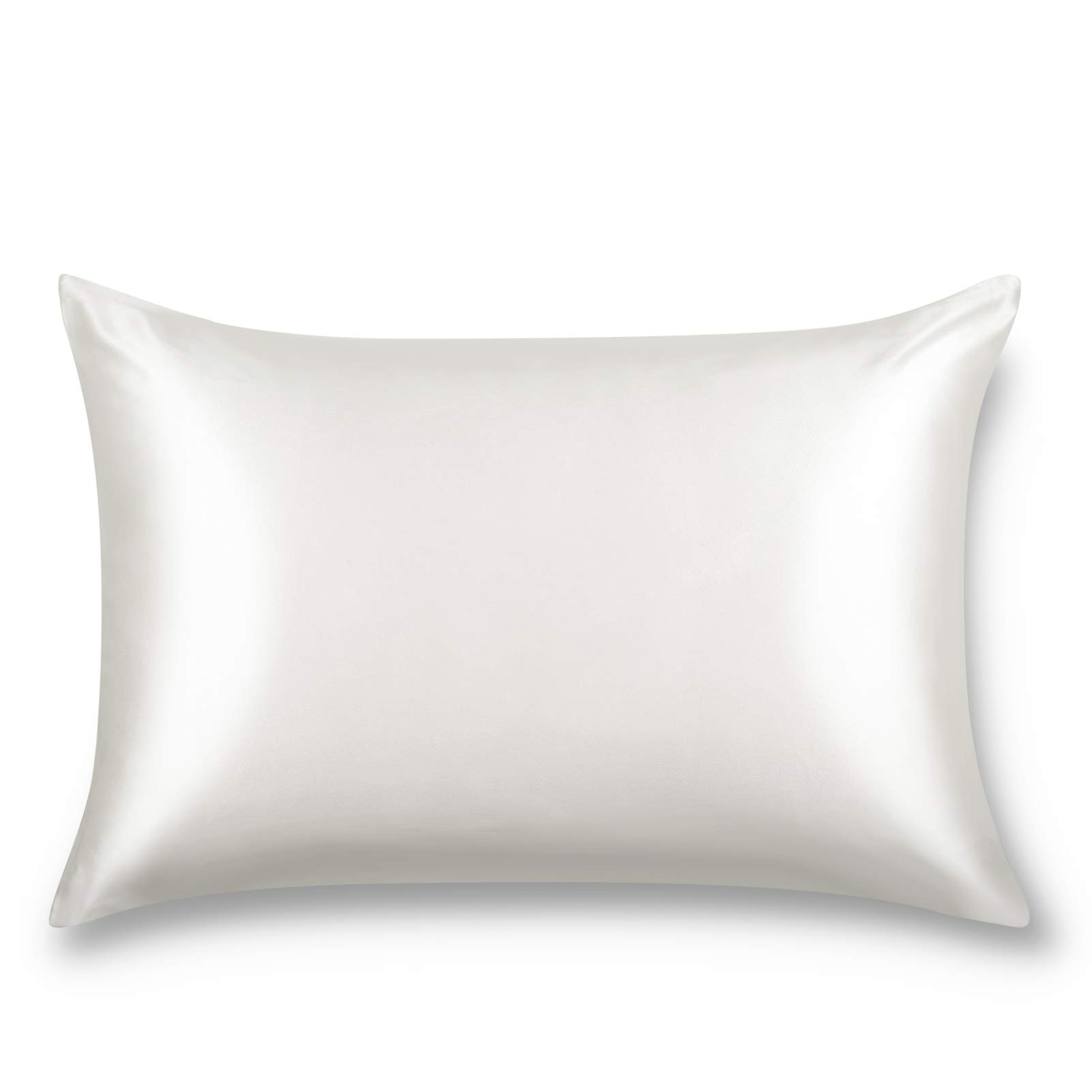 ALASKA BEAR Natural Silk Pillowcase, Hypoallergenic, 19 Momme, 600 Thread Count 100 Percent Mulberry Silk, Queen Size with Hidden Zipper (1, Ivory White)