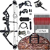 SinoArt Compound Bow 30-55lbs 24'-29.5'...